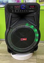 Колонка аккумуляторная Sky Sound-7272 15 дюймов с радиомикрофоном 200W (USB/FM/Bluetooth/TWS)