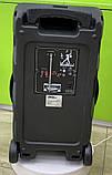 Колонка аккумуляторная Sky Sound-7171 12 дюймов с радиомикрофоном 180W (USB/FM/Bluetooth/TWS), фото 2
