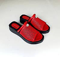 Женские кожаные красные классические шлепанцы босоножки на танкетке с перфорацией новинка