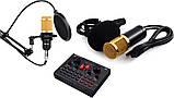 Мікрофон конденсаторний Protech BM-800 зі звуковою картою V8X pro і пантографом з вітрозахистом, фото 4