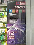 Колонка аккумуляторная Sky Sound-7171 12 дюймов с радиомикрофоном 180W (USB/FM/Bluetooth/TWS), фото 5