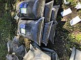 Грунт для лохини Київ Грунт для посадки лохини продаж Київ. Кислий Торф., фото 10