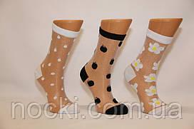 Жіночі шкарпетки середні з капроном і малюнком КАРДЕШЛЕР асорті 2