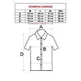 Сорочка чоловіча, прямого покрою, з коротким рукавом FITMENS/PASHAMEN KP.E 1397-04 90% бавовна 10% поліестер, фото 2