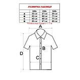 Сорочка чоловіча, прямого покрою, з коротким рукавом FITMENS/PASHAMEN KP.E.2083-04 100% бавовна 4XL(Р), фото 2