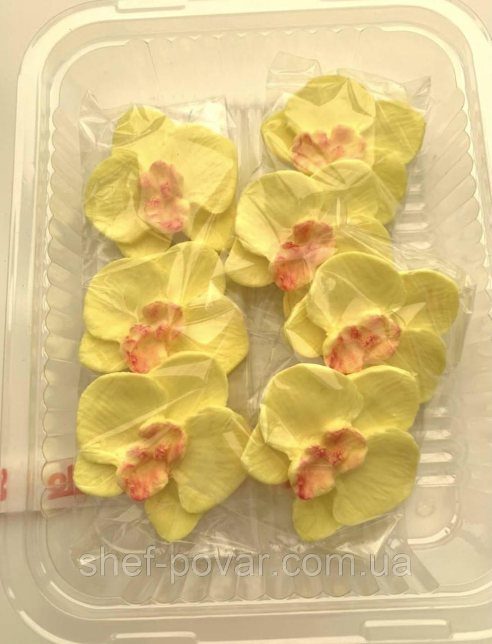 """Орхидея жёлтая d-40мм. ТМ """"Slado"""""""
