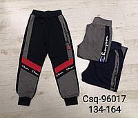 Спортивные штаны для мальчиков оптом, Mr.David, 134-164 см,  № CSQ-96017