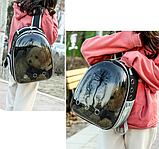 Рюкзак для перенесення тварин Уцінка!, фото 3
