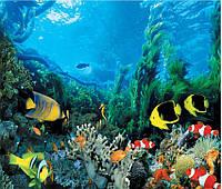 "Фотообои ""Подводное царство 201х242""                                                               Artdecor"