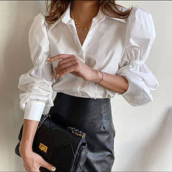 Блузи, сорочки жіночі