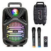 Активная акустическая система BIG PRO BIG110MAGIC USB/MP3/FM/BT/TWS + 2 беспроводных микрофона 110 Ватт