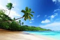 Пляж с пальмами УФ на кафеле, плитка 20х30см.