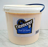 """Профессиональный клей Titebond® II Premium Wood Glue ТМ """"TITEBOND"""" (5 кг), фото 1"""