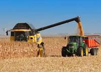 Услуги по уборке ранних зерновых
