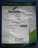 Семена томата Пандароза F1 500 сем