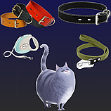 Поводки и ошейники для кошек
