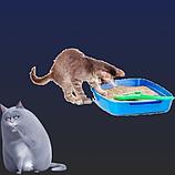 Приучение котят, коррекция поведения и средства для туалета