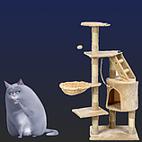 Когтеточки от пола до потолка для котов и кошек
