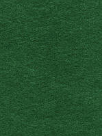 Фетр Жесткий Зеленый 1 мм 21x30 см