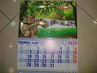 Календарь на 2016 год Обезьяна фотограф 30х72 см