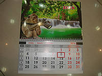 Календарь на 2016 год Обезьяна фотограф 30х36 см
