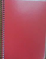 Мицар Блокнот А5, 80л, бок пружина, пластиковая обложка арт. 140002