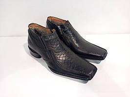 Черевики Etor 2324-470 чорний