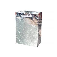 Подарочный пакет PPW PAPER Lesko ZD004-13 Silver