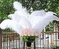 Большие страусиные перья белое 50-55 см. для декора