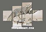 модульная картина Африка. Дикие животные (Леопард и зебры)160*114 см Код: 402.4к.160, фото 2