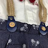 Комплект рубашка, штаны, подтяжки, бабочка для мальчика Синий Hippil Турция 68 (р), фото 3