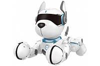 Интерактивная собака-робот ZYA-A2884 питомец с дистанционным управлением, 12 команд на русском языке