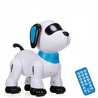 Интерактивная собака-робот K21 на радиоуправлении, выполняет команды, реагирует на хлопок, на аккумуляторе
