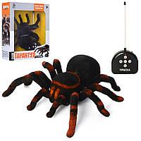 Интерактивный паук на радиоуправлении с шевелящимися лапками для ребенка 781 (KI-3020), тарантул
