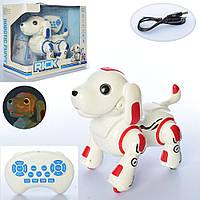 Многофункциональная интерактивная Собака робот 837 световые и звуковые эффекты (2 цвета)