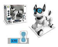 Собака робот интерактивная для ребенка JZL на радиоуправлении 20173-1