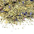 Чай Teahouse (Тиахаус) Эхинацея и Мята (со стевией) 100 г (Tea Teahouse Echinacea and Mint (stevia) 100 g), фото 2
