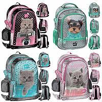 Рюкзак школьный с кошкой котенком для девочки Paso PEX-081 Польша