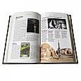 """Книга """"Самые необыкновенные места планеты. Atlas Obscura"""" подарочное издание в кожаном переплете, фото 7"""