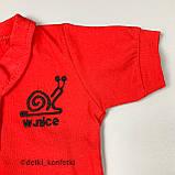 Комплект боди, шорты красный Интерлок Murat baby Турция 74 (р) 92, фото 3