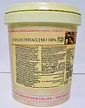 Фісташкова натуральна паста JOYPASTE PISTACCHIO 100% 50 грам, фото 2