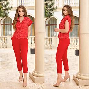Костюм двойка рубашка и брюки сзади на резинке, №339, красный в мелкий горошек, с 44 по 58р., фото 2
