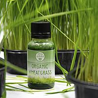 Витграсс (сок ростков пшеницы)