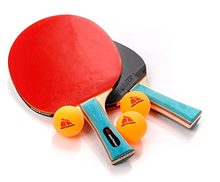 Набор для настольного тенниса Meteor Zephyr 5 предметов (15021)