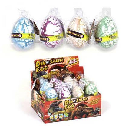 """Растушки в яйце """"Динозавры"""" С37607"""