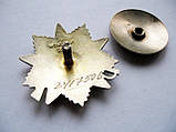 Орден Отечественной войны 2 степени Серебро 925 пробы, фото 8