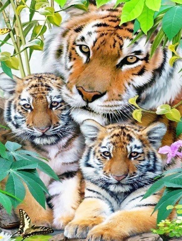 TN541 Набор алмазной мозаики на подрамнике Тигрица с тигрятами