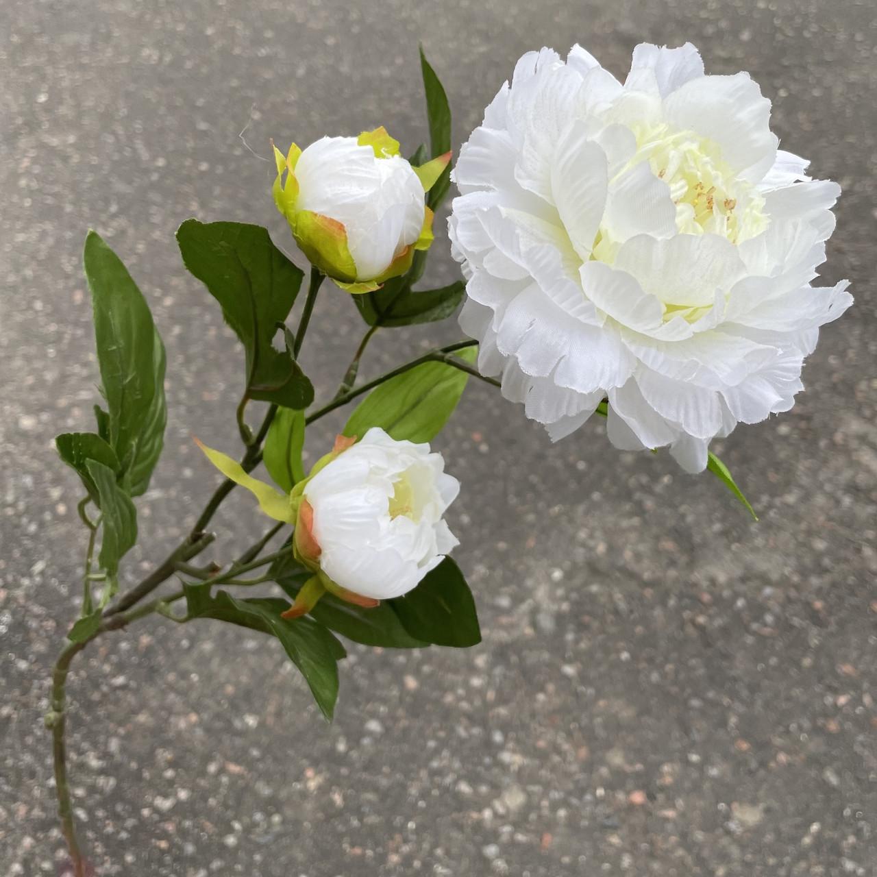 Ветка пиона  3-ка белый  83 см.