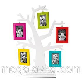 Фоторамка Родове дерево з різнокольоровими рамками