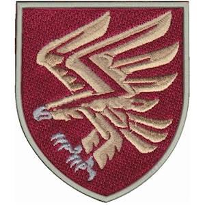 Шеврон 95 ОДШБр на липучке, фото 2